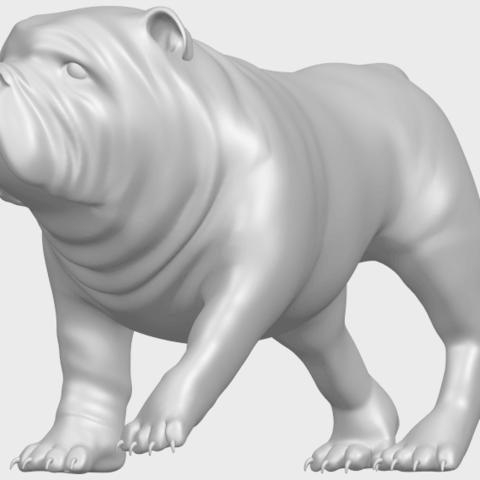 14_TDA0520_Bull_Dog_01A02.png Télécharger fichier STL gratuit Chien de taureau 01 • Plan pour impression 3D, GeorgesNikkei