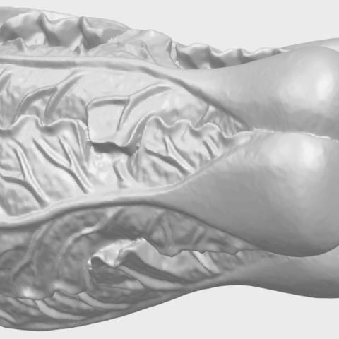 03_TDA0497_Vegetable_Fatt_Choi_03A02.png Download free STL file Vegetable - Fatt Choi • 3D printable object, GeorgesNikkei