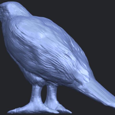 12_TDA0599_Eagle_02B02.png Download free STL file Eagle 02 • 3D printable design, GeorgesNikkei