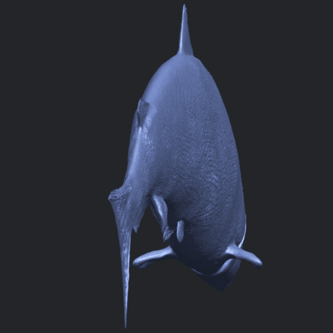 22_TDA0598_Fish_04B04.png Download free STL file  Fish 04 • 3D printable object, GeorgesNikkei