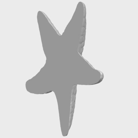 12_TDA0608_Starfish_02A08.png Télécharger fichier STL gratuit Étoile de mer 02 • Plan pour impression 3D, GeorgesNikkei