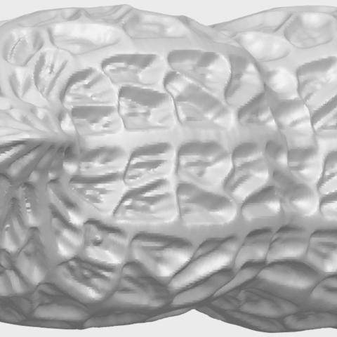 TDA0327_PeanutA05.png Download free STL file Peanut • 3D printer model, GeorgesNikkei