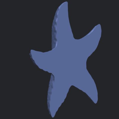 10_TDA0609_Starfish_03B05.png Télécharger fichier STL gratuit Étoile de mer 03 • Plan pour imprimante 3D, GeorgesNikkei