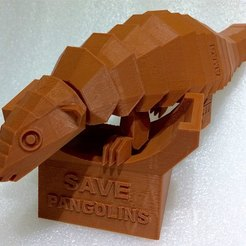 Download free 3D printer model Save pangolins, BoozeKashi