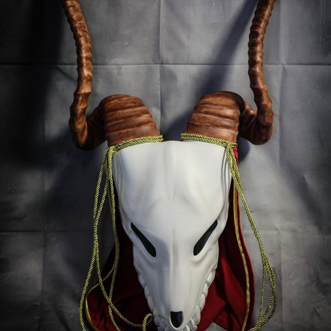 IMG_4955.jpg Download STL file Elias Ainsworth Mask | The Ancient Magus' Bride Mask  • 3D printer design, AntonShtern