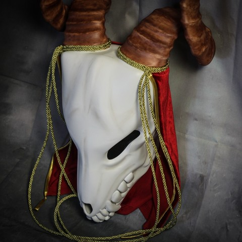 IMG_4960.jpg Download STL file Elias Ainsworth Mask | The Ancient Magus' Bride Mask  • 3D printer design, AntonShtern