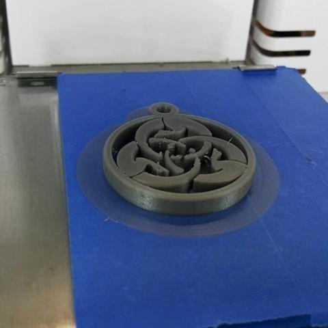 9a96c0ff127d26b98a37f5de1edb93ce_preview_featured.jpg Download free STL file Ghost Dog Medal • 3D printer design, NOP21