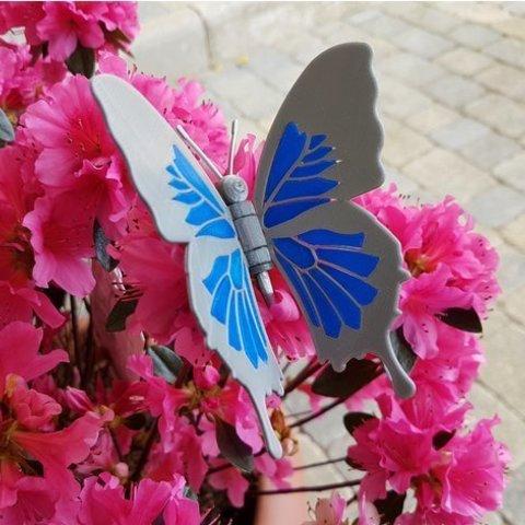 e96c37407e376eae8606dfa9db246cf4_preview_featured.jpg Download free STL file Blue Butterfly • 3D print design, NOP21