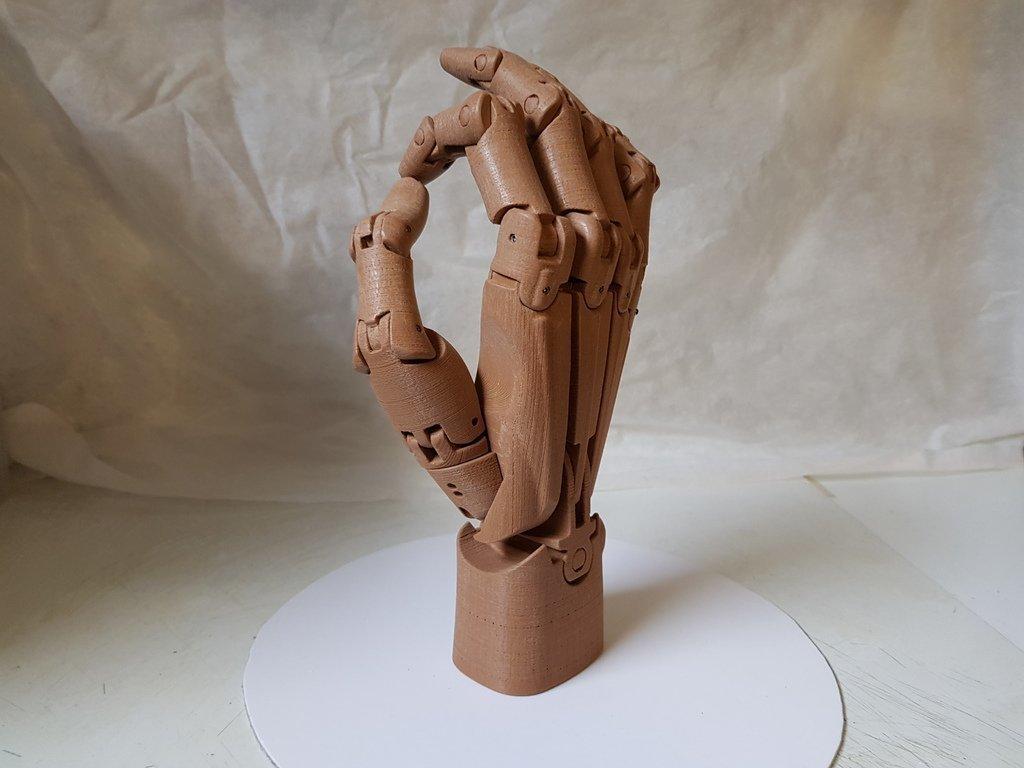 f3285dc41e1f33342b91c919bd1004ec_display_large.jpg Download free STL file Articulated hand • 3D printer model, NOP21