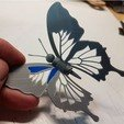 251f42e274df9b3c0eb198745d2d5982_preview_featured.jpg Download free STL file Blue Butterfly • 3D print design, NOP21