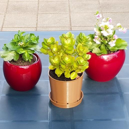 Télécharger fichier STL gratuit Pot de plante brun classique pour l'impression 3D • Plan imprimable en 3D, MaxFunkner