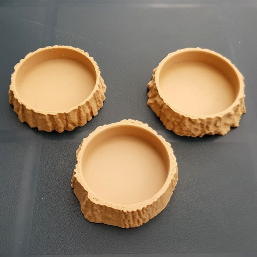 3D Scanned Tree Texture - Oak, Birch, and Pine Plant Coasters 1000.jpg Download STL file 3D Scanned Birch Tree Texture - For Functional and Decorative Items • Template to 3D print, MaxFunkner