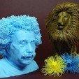 Free 3D printer files Hairy Einstein, 3DWithUs