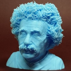 Free 3D printer files Hairy Einstein, 3DWithUs