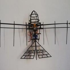 IMG_20201009_150910.jpg Download STL file RC Bird • 3D printer design, Nizarnizz