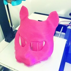 Download free 3D printing designs Street Cat Mask, delukart