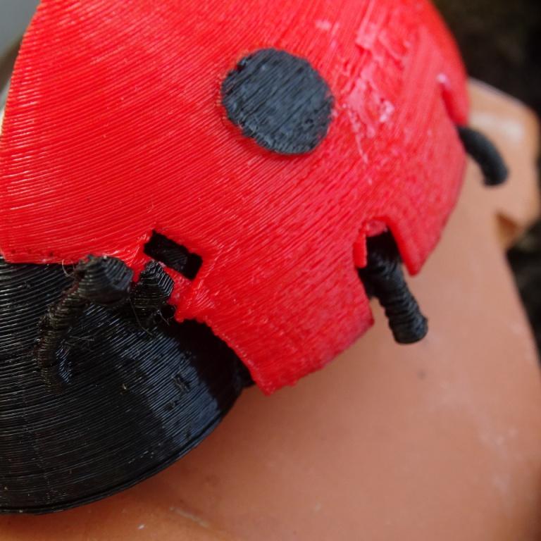 DSC08266.JPG Download free STL file Ladybug Box _ Ladybug Box • 3D printer model, LaWouattebete
