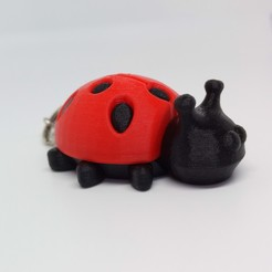 IMG_20200419_140929.jpg Download STL file COCCINELLE • 3D printer model, PLP