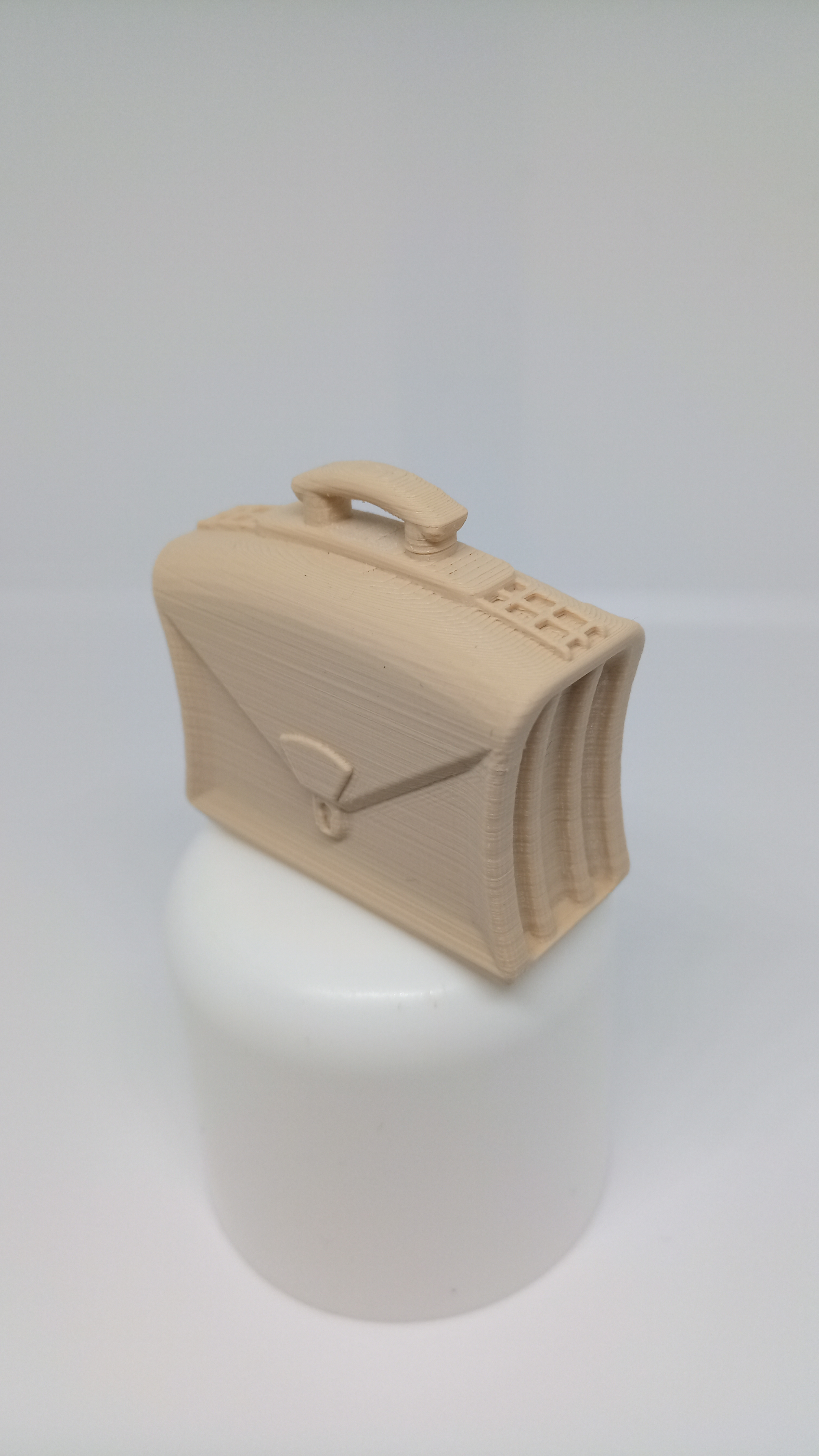 IMG_20200405_142522.jpg Download free STL file SACOCHE MASTER • Template to 3D print, PLP