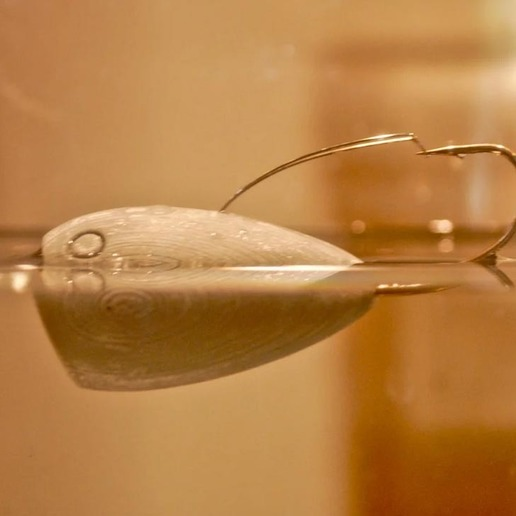 CroatianEgg4.jpg Download free STL file Croatian Egg Fishing Lure • 3D printable design, sthone