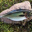 Free STL files Lipless Crankbait, sthone