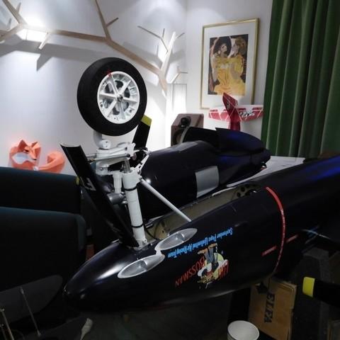 DSCN0193.JPG Download free STL file Wheel set for ESM F7F Tigercat. • Design to 3D print, tahustvedt