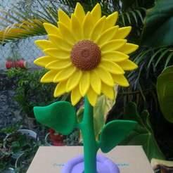 Imprimir en 3D girasol flor planta, jozz