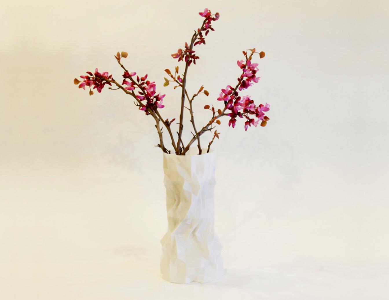 Capture d'écran 2016-11-14 à 17.38.17.png Télécharger fichier STL gratuit Vase de printemps persan • Modèle à imprimer en 3D, BAYA
