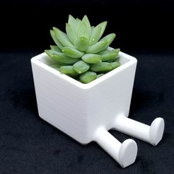 Download free STL Succulent Planter / 3D printed planter / Legged Planter, JavierP4z