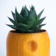 Plan imprimante 3D gatuit Pot de fleur PacMan Fantôme, yoyo-31