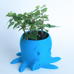 Download free 3D printer designs Octopus Planter, yoyo-31
