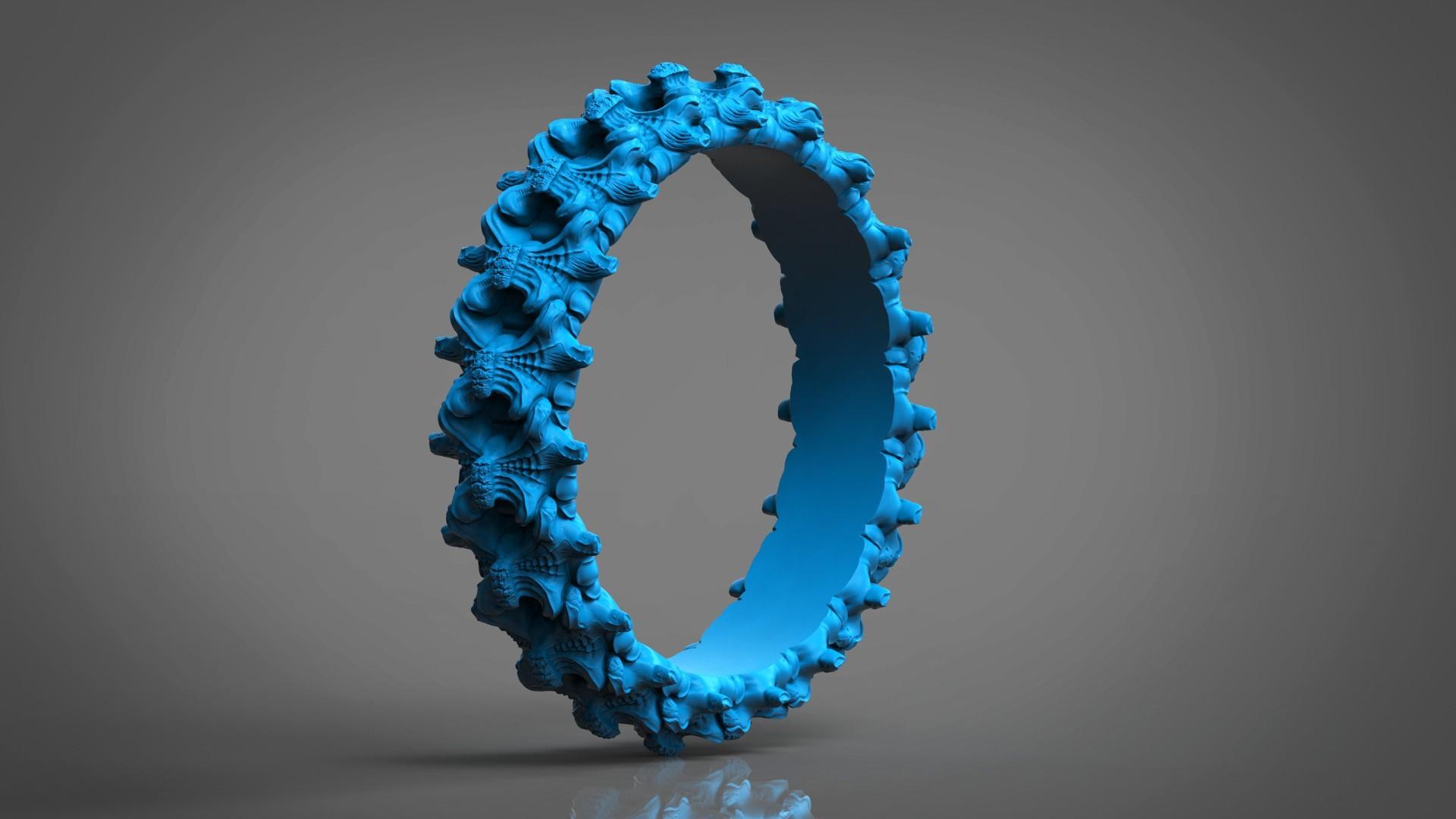 8.jpg Download OBJ file Biomechanical Ring - SpineRing  • 3D print object, Roman_Kharikov