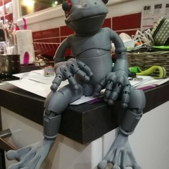 Free 3D printer files Froggy: the 3D printed ball-jointed frog doll, Aldebaran
