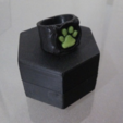 Free Chat Noir's Ring 3D model, Vexelius