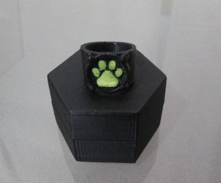 Capture d'écran 2016-11-29 à 10.29.39.png Download free STL file Chat Noir's Ring • 3D print template, Vexelius