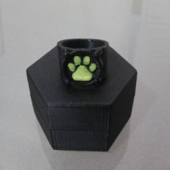 Capture d'écran 2016-11-29 à 10.29.39.png Download free STL file Chat Noir's Ring • 3D print template, Vexelius