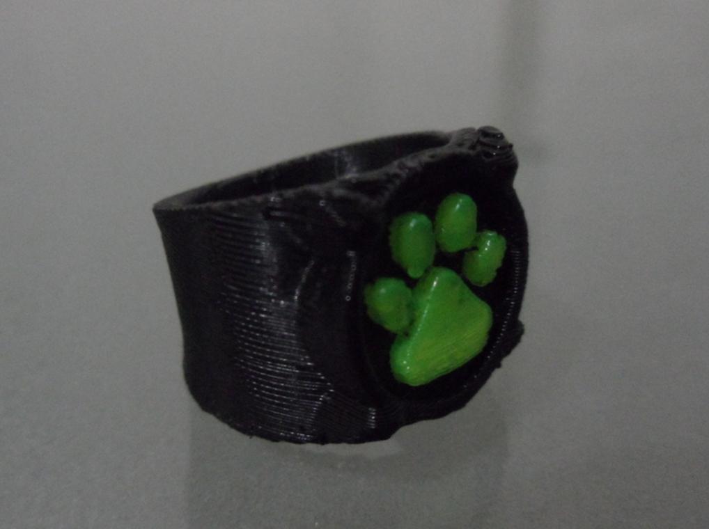 Capture d'écran 2016-11-29 à 10.31.07.png Download free STL file Chat Noir's Ring • 3D print template, Vexelius