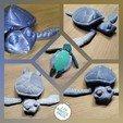 Download 3D printer model Cute Flexi Print-in-Place Turtle, Les-Minutes-Maker