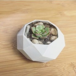 Download 3D printer files Lowpoly Planter, ApexSpin