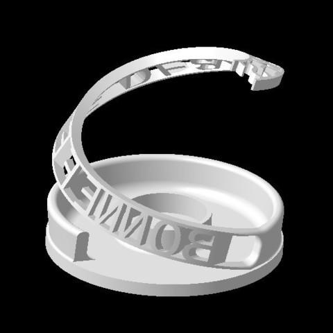 Download STL file PERSONALIZABLE DECO PURPOSE-2 • 3D printer template, Ibarakel