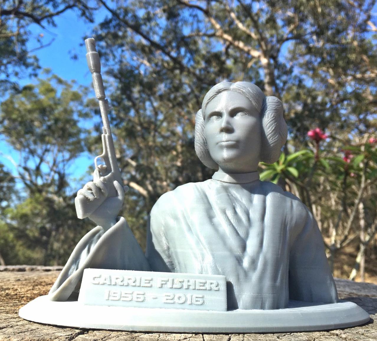 Capture d'écran 2016-12-30 à 15.53.18.png Download free STL file Carrie Fisher Memorial Bust - 1956-2016 • 3D printing design, Geoffro