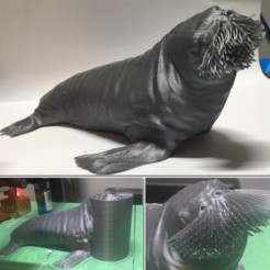 Free 3D printer designs The Walrus, Geoffro