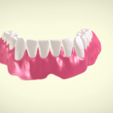 Screenshot_12.png Download OBJ file Full Dentures with Many Production Options  • 3D printing object, LabMagic3DCAD