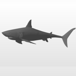Download STL file Shark - shark • 3D printer template, nicolasreynoso