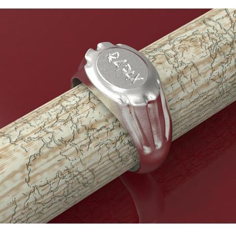 rapax ring insta 21.jpg Download STL file Roman legionary ring of the XXI Rapax • Template to 3D print, plasmeo3d