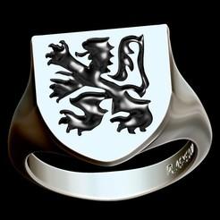 VlMED_Render.jpg Télécharger fichier STL Medieval Flanders ring • Design imprimable en 3D, plasmeo3d