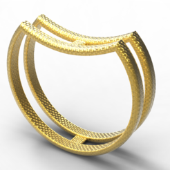 Download STL file Single ring double, plasmeo3d