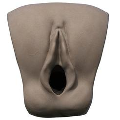 3D printer models realistic printable vagina, plasmeo3d