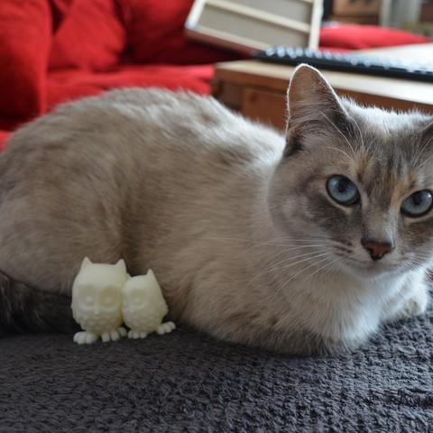 Free 3D printer designs Cuddling Owls, Biniou