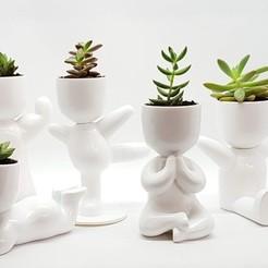 20190519_162815.jpg Télécharger fichier STL plantes en pot et stl pour l'impression 3D • Modèle imprimable en 3D, FabioDiazCastro